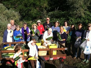 picture of volunteers with harvest